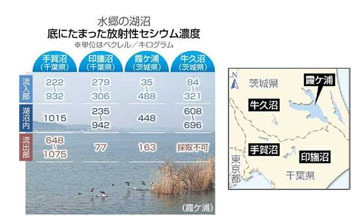 blog 水郷の湖沼 底に溜まった放射性セシウム-2015.2.20. (東京新聞).jpg