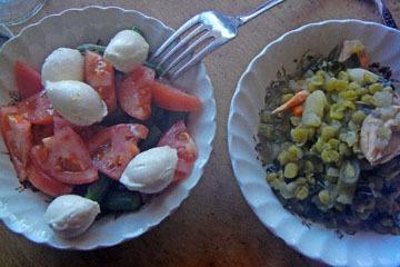 blog CP4 Brunch, Salmon & Pea Soup, Tomato & Mozzarella Salad, CA_DSCN4450-5.2.17.jpg