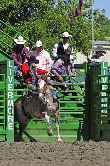 blog (4x6@300) Yoko 76 Livermore, Saddle Bronco 4, Taylor Cambra (NS)_DSC7614-6.10.17.(3).jpg