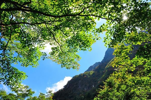 16石鎚山17.09.26