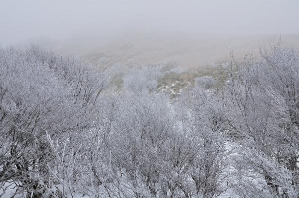 4中津明神山17.12.29