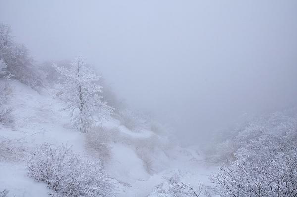 15中津明神山17.12.29