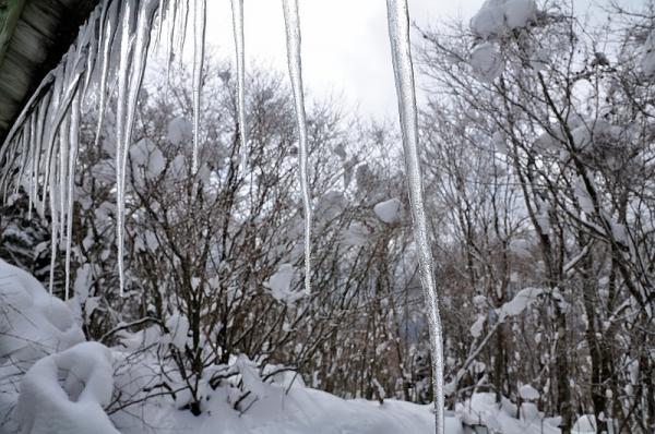 11天狗高原18.02.03