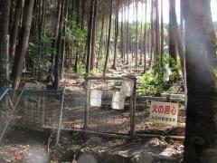 mikamiyama1.jpg