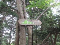 mikamiyama4.jpg