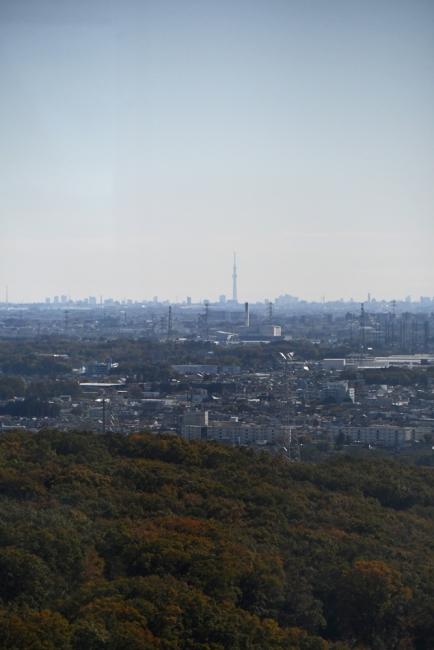 14462-風景-5