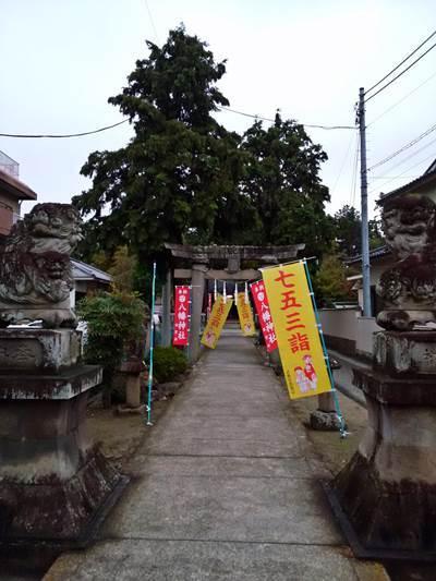 千塚八幡神社七五三 20171021