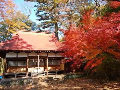 湯谷神社の紅葉20171127