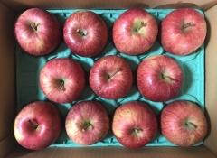 サンデーからのりんご