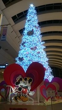 DSC_0363_20171125180149d66.jpg