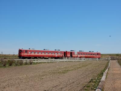 DSCN7948.jpg