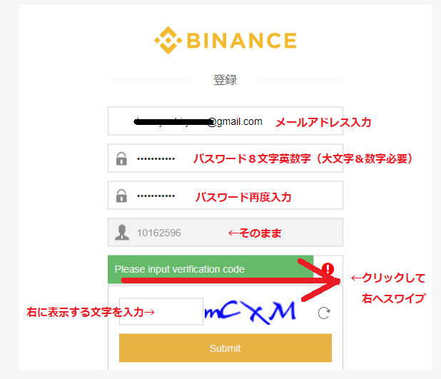 binance_touroku_form.png